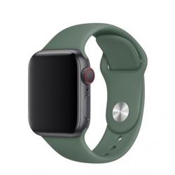 Apple Watch Silikon Armband 42/44mm, Grün